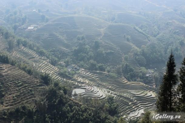Phong Cảnh 3804