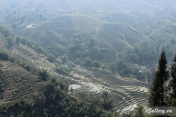 Phong Cảnh 3775