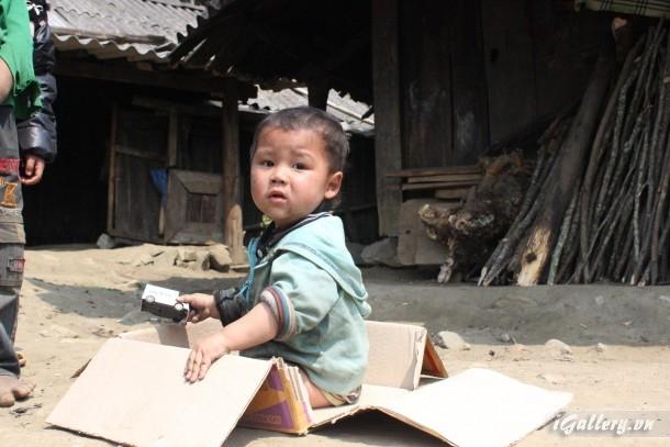 Phong Cảnh 3846