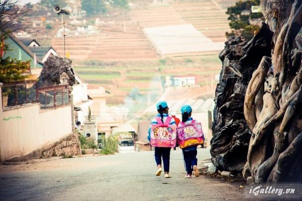 Phong Cảnh 3809