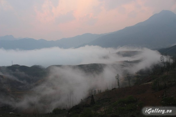 Phong Cảnh 3808