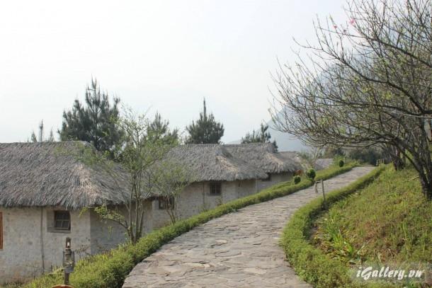 Phong Cảnh 3933